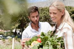 Mature couple holding crate of fresh vegetables in garden - stock photo