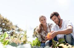 Mature couple inspecting freshly grown pepper Stock Photos