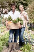 Portrait of mature couple in garden, holding crate of fresh vegetables - stock photo