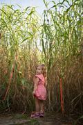 Young girl walking through pumpkin patch, rear view Stock Photos