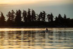Silhouetted man rowing single scull on Puget Sound, Winslow, Bainbridge Island, - stock photo