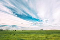 Green Field In Spring Season. Agricultural Rural Landscape At Evening Stock Photos