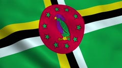 Realistic Dominica flag - stock footage
