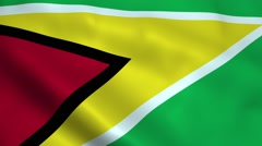 Realistic Guyana flag Stock Footage