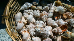 A variety of seashells in wicker basket Stock Footage