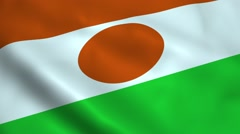 Realistic Niger flag Stock Footage