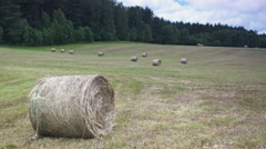 Bale of Straw and field Stock Footage