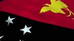 Realistic Papua New Guinea flag Stock Footage