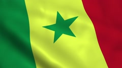 Realistic Senegal flag Stock Footage
