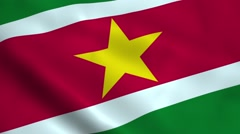 Realistic Suriname flag Stock Footage