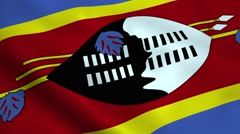 Realistic Swaziland flag Stock Footage
