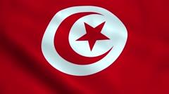 Realistic Tunisia flag Stock Footage