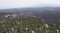 Aerial of pine trees in mountainous region during winter Stock Footage