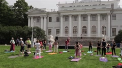 People Practice Yoga on the Grass in the Park Stock Footage