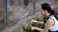 Girl playing with Sand Cats at sunny day Stock Footage
