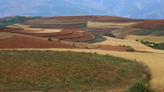Red hills countryside windy road Stock Footage