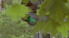 Green traffic light through the leaves of slow-motion video Stock Footage