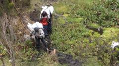 Porters Ascending Mount Kilimanjar Stock Footage