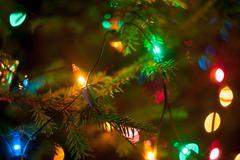 Christmas tree lights Kuvituskuvat