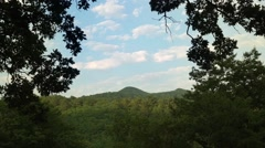 Time-lapse film of blue sky background with clouds between oaks in the mountains Stock Footage