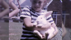 Little Boy Holds Cute Pet Bunny Rabbit 1960s Vintage Film Home Movie 9794 Stock Footage
