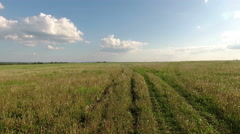 Flying over grassland at summer season. Road in green grass Stock Footage