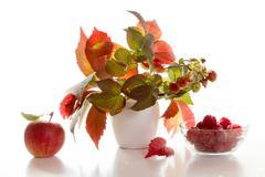 Autumn bouquet Stock Photos