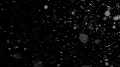 Fluffy Snowfall at night. Stock Footage