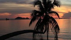 Sea water wave and coconut palm tree silhouette at sunset on the beach, Thailand Stock Footage