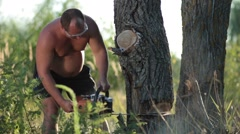 Man in glasses with chainsaw sawing a dry tree Stock Footage