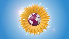 Orbiting Globe Inside Of A Sunflower Stock Footage
