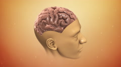 CG Human Brain Animation Stock Footage