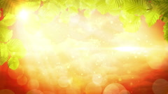 Flower ornament abstract background animation Stock Footage
