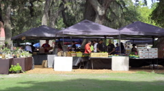 People buying groceries at Farmers Market, Downtown Orlando Stock Footage