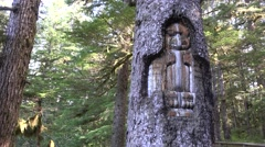 Totem carved into the tree, Glacier National Park, Alaska Stock Footage