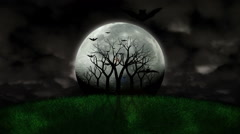 Full Moon And Scary Scene Timelapse With Flying Bats Stock Footage