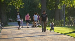 Cats Day Bucha Ukraine People Walking by Alley Park Sunset Green Fresh Lawns Stock Footage