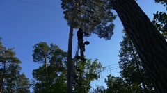 Tourist Silhouette in Adventure Rope Park Young Man Has Fun on Rope Road in Stock Footage