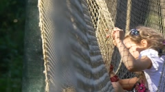 Fair-Haired School Girl Stuck in a Fishing Grid Stock Footage