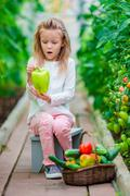 Little girl collecting crop cucumbers and tomatos in greenhouse. Portrait of kid - stock photo