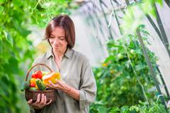 Young woman with basket full of vegetables in the greenhouse. Time to harvest Stock Photos