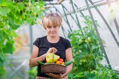 Woman with basket of greenery and vegetables in the greenhouse. Time to harvest Kuvituskuvat