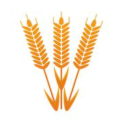 Wheat ear icon Stock Illustration
