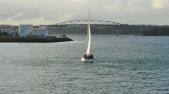 New Zealand Auckland Bay sailboat with bird Stock Footage