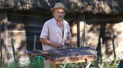 Traditional ukrainian musical instrument gusli. Kiev, Ukraine Stock Footage