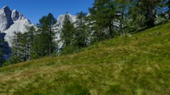 Beautiful view towards mountain peaks from a pasture with lake Stock Footage