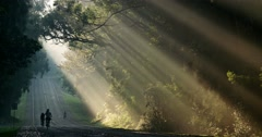 Sun rays shine down beautifully onto a highway or road as bicycles pass. Stock Footage