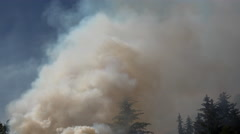Billowing Smoke Forest Fire Pan Stock Footage