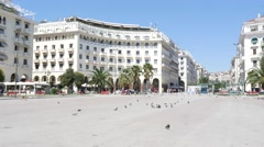 Stray dog and street pigeons on a center square of Thessaloniki Stock Footage