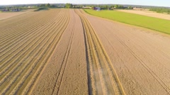 Flying over combine harvester at organic grainfield on a farm Stock Footage